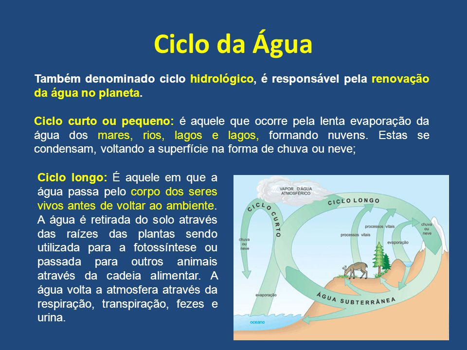 Ciclo da Água Também denominado ciclo hidrológico, é responsável pela renovação da água no planeta. Ciclo curto ou pequeno: é aquele que ocorre pela l