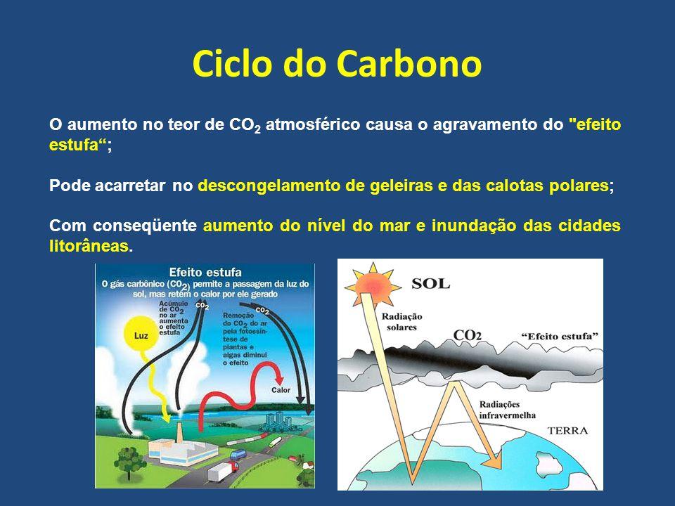 O aumento no teor de CO 2 atmosférico causa o agravamento do efeito estufa ; Pode acarretar no descongelamento de geleiras e das calotas polares; Com conseqüente aumento do nível do mar e inundação das cidades litorâneas.