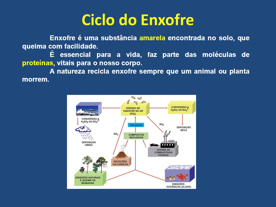 Ciclo do Enxofre Enxofre é uma substância amarela encontrada no solo, que queima com facilidade. É essencial para a vida, faz parte das moléculas de p