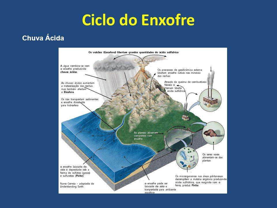 Ciclo do Enxofre Chuva Ácida