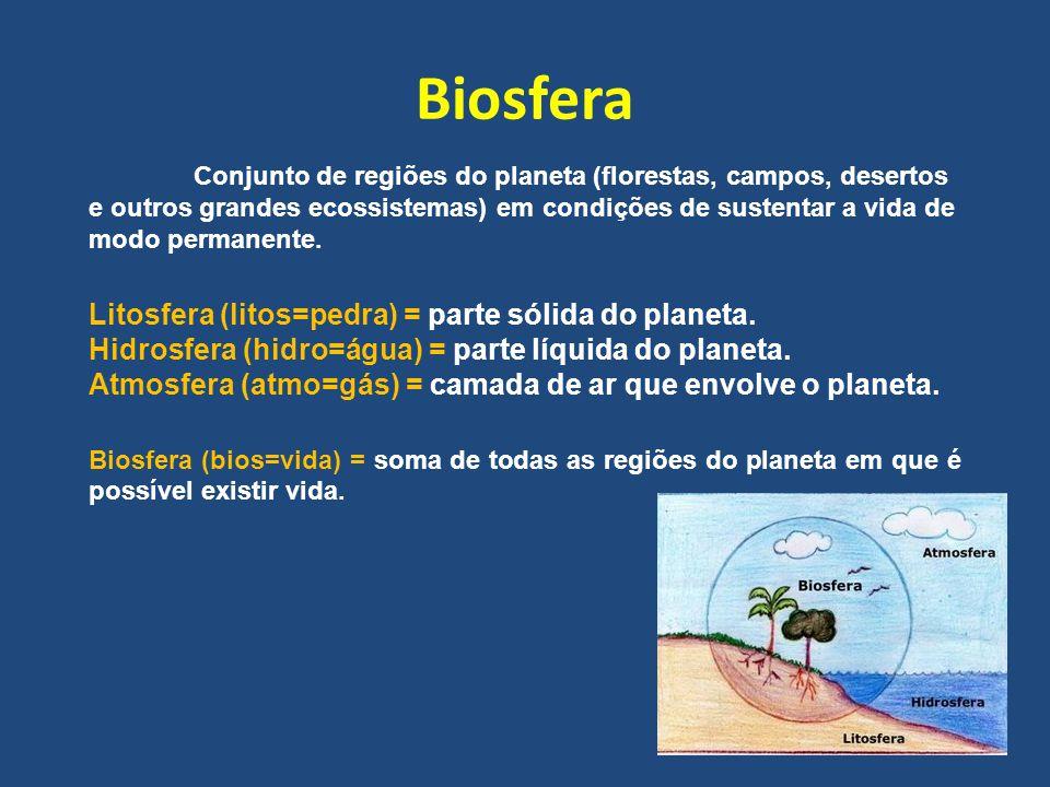 Biosfera Conjunto de regiões do planeta (florestas, campos, desertos e outros grandes ecossistemas) em condições de sustentar a vida de modo permanent