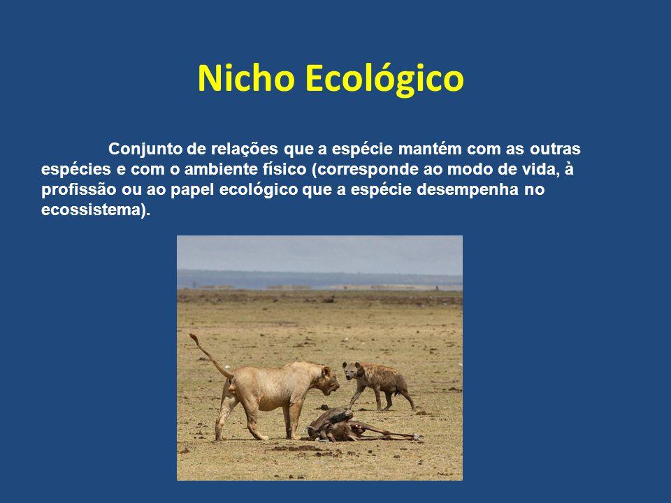 Conjunto de relações que a espécie mantém com as outras espécies e com o ambiente físico (corresponde ao modo de vida, à profissão ou ao papel ecológico que a espécie desempenha no ecossistema).