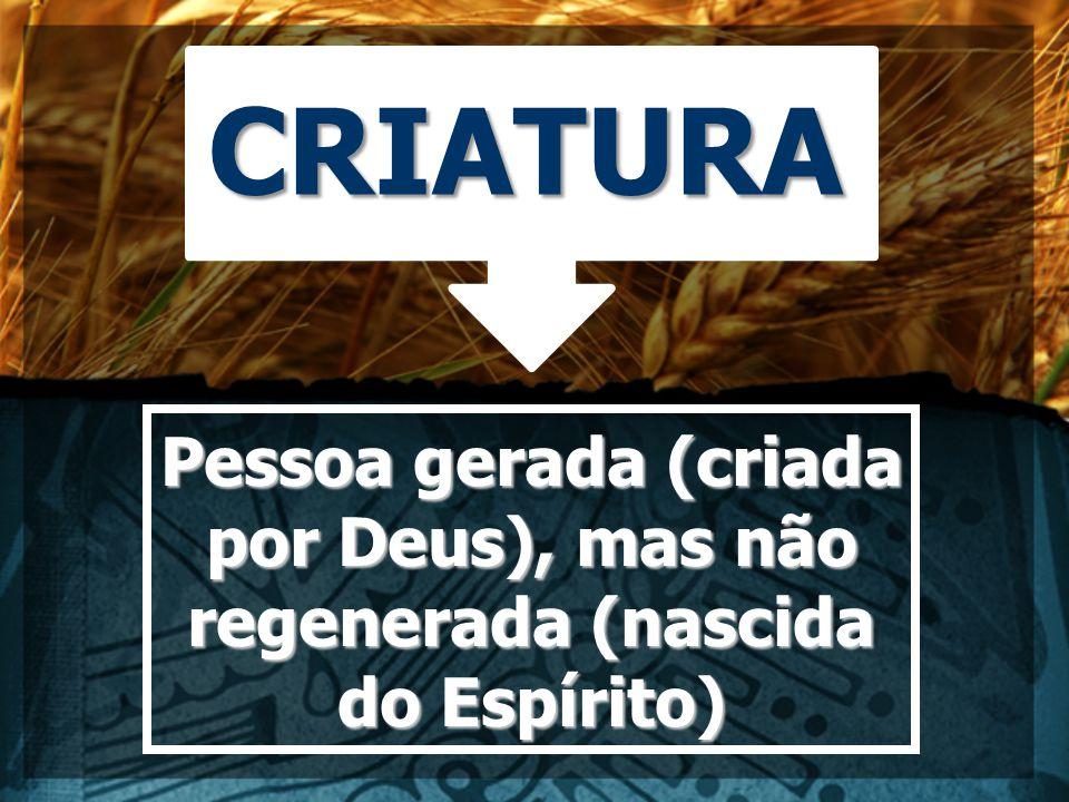 CRIATURA Pessoa gerada (criada por Deus), mas não regenerada (nascida do Espírito)