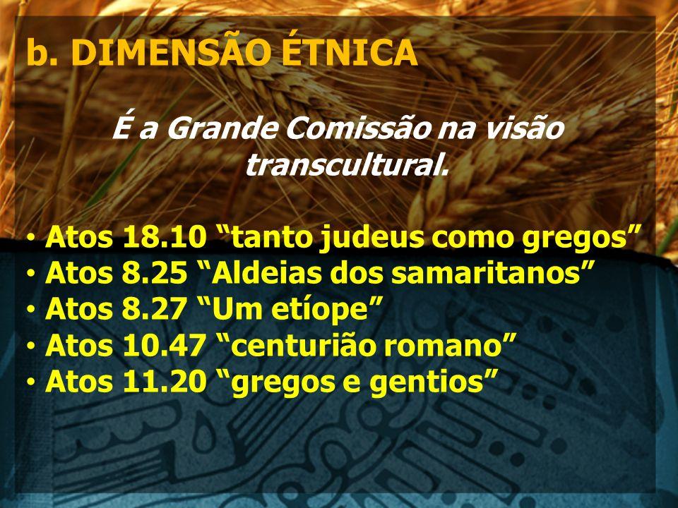 b.DIMENSÃO ÉTNICA É a Grande Comissão na visão transcultural.