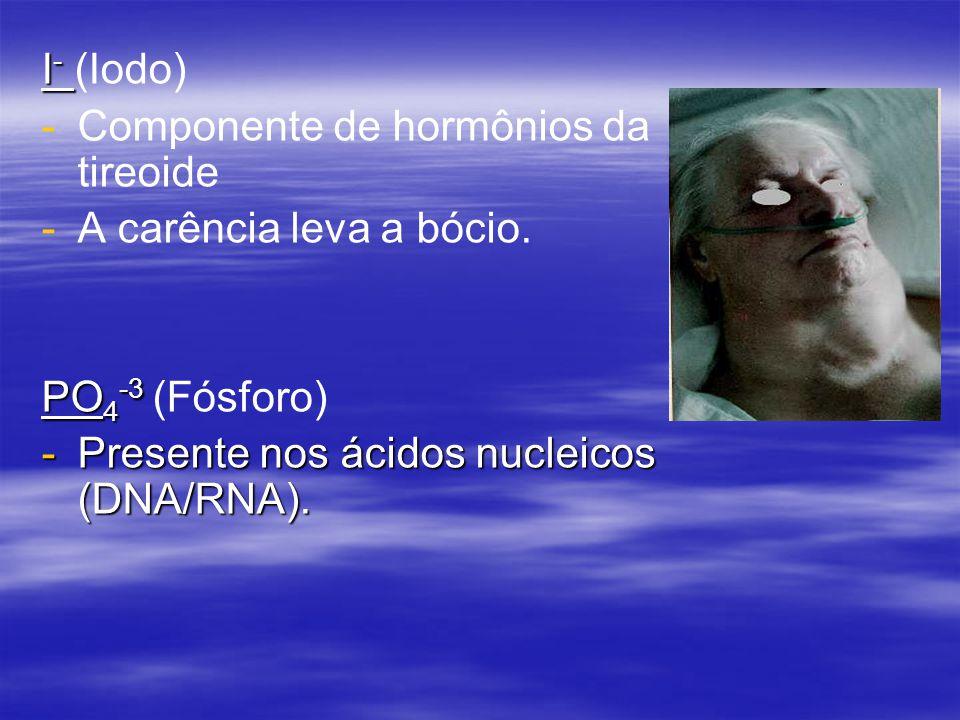 I - I - (Iodo) - -Componente de hormônios da tireoide - -A carência leva a bócio.