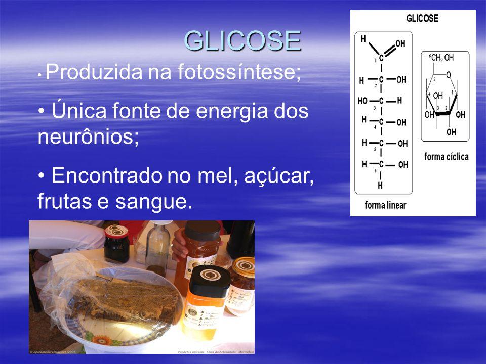 GLICOSE Produzida na fotossíntese; Única fonte de energia dos neurônios; Encontrado no mel, açúcar, frutas e sangue.