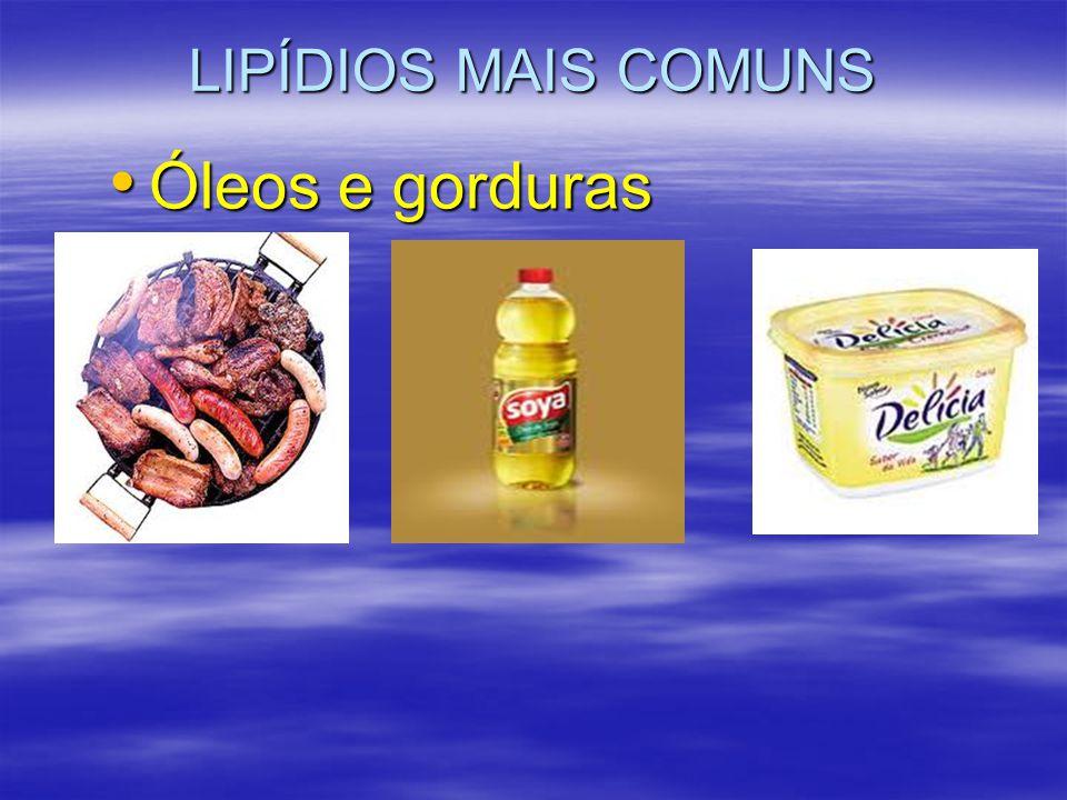 LIPÍDIOS MAIS COMUNS Óleos e gorduras Óleos e gorduras