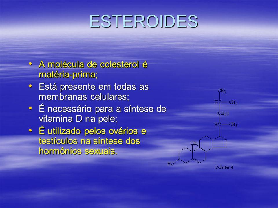 ESTEROIDES A molécula de colesterol é matéria-prima; A molécula de colesterol é matéria-prima; Está presente em todas as membranas celulares; Está presente em todas as membranas celulares; É necessário para a síntese de vitamina D na pele; É necessário para a síntese de vitamina D na pele; É utilizado pelos ovários e testículos na síntese dos hormônios sexuais.