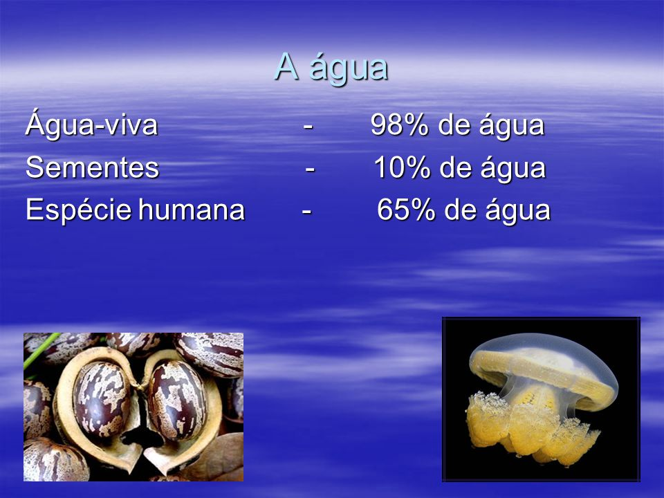 A água Água-viva - 98% de água Sementes - 10% de água Espécie humana - 65% de água