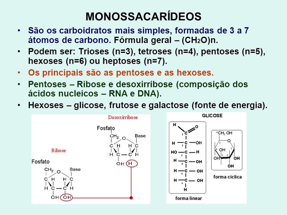 MONOSSACARÍDEOS São os carboidratos mais simples, formadas de 3 a 7 átomos de carbono. Fórmula geral – (CH 2 O)n. Podem ser: Trioses (n=3), tetroses (