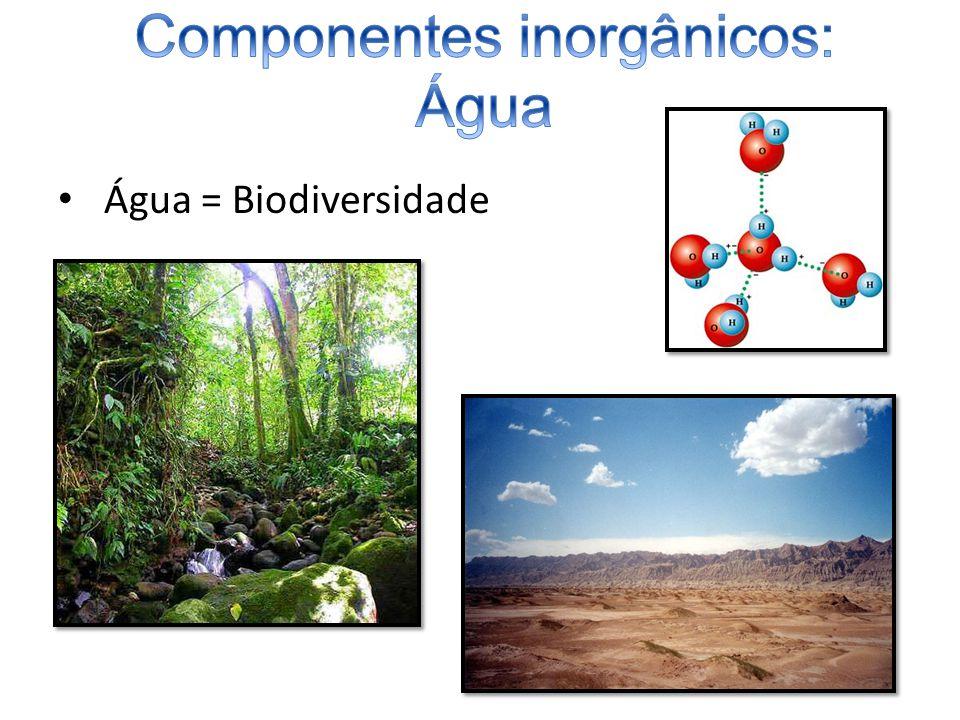 A quantidade de água varia de acordo com: – taxa metabólica; –Tipo de tecido; –Idade; –Espécie.