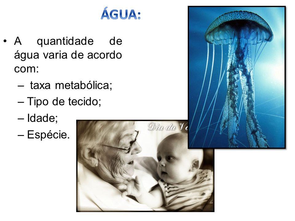 VARIAÇÕES NA TAXA DE ÁGUA NOS SERES VIVOS 1.IDADE: A taxa de água decresce com o aumento da idade.