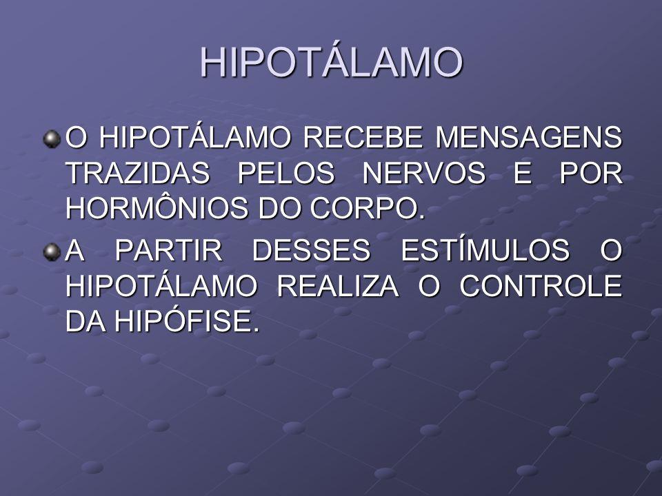 HIPOTÁLAMO O HIPOTÁLAMO RECEBE MENSAGENS TRAZIDAS PELOS NERVOS E POR HORMÔNIOS DO CORPO. A PARTIR DESSES ESTÍMULOS O HIPOTÁLAMO REALIZA O CONTROLE DA