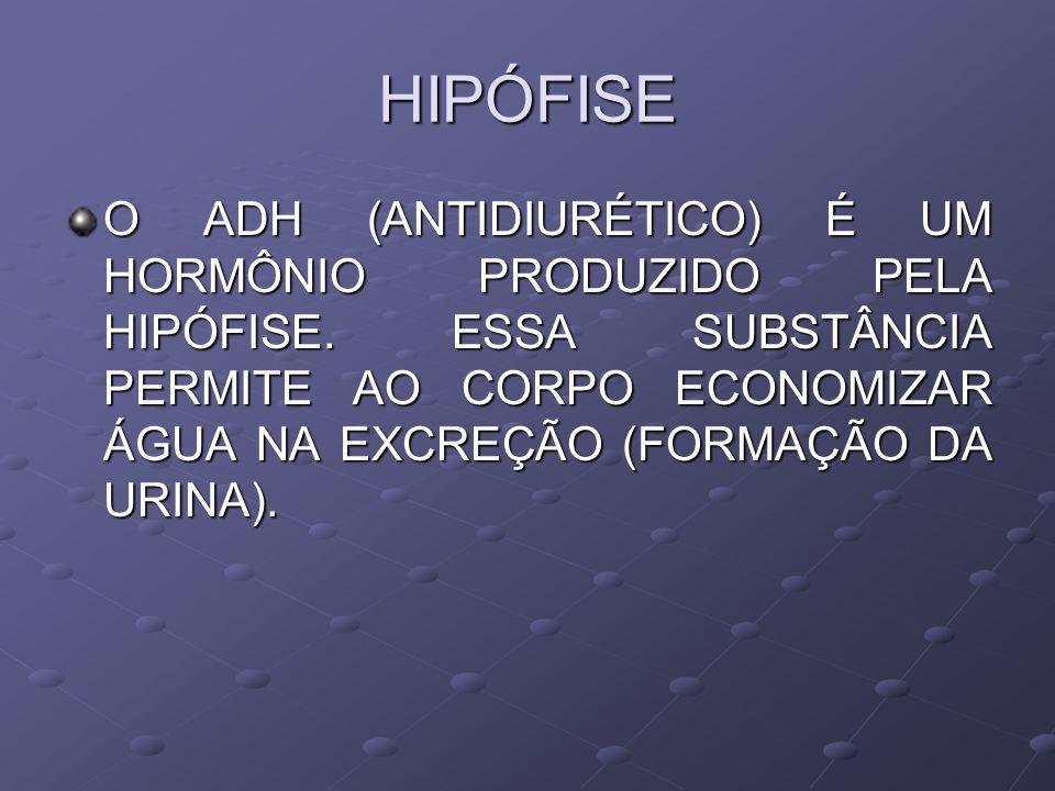 HIPÓFISE O ADH (ANTIDIURÉTICO) É UM HORMÔNIO PRODUZIDO PELA HIPÓFISE. ESSA SUBSTÂNCIA PERMITE AO CORPO ECONOMIZAR ÁGUA NA EXCREÇÃO (FORMAÇÃO DA URINA)