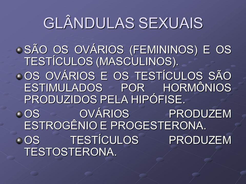 GLÂNDULAS SEXUAIS SÃO OS OVÁRIOS (FEMININOS) E OS TESTÍCULOS (MASCULINOS). OS OVÁRIOS E OS TESTÍCULOS SÃO ESTIMULADOS POR HORMÔNIOS PRODUZIDOS PELA HI