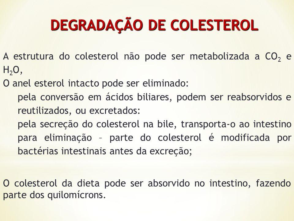 DEGRADAÇÃO DE COLESTEROL DEGRADAÇÃO DE COLESTEROL A estrutura do colesterol não pode ser metabolizada a CO 2 e H 2 O, O anel esterol intacto pode ser