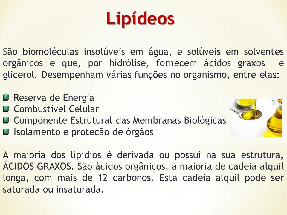 Lipídeos Lipídeos São biomoléculas insolúveis em água, e solúveis em solventes orgânicos e que, por hidrólise, fornecem ácidos graxos e glicerol. Dese