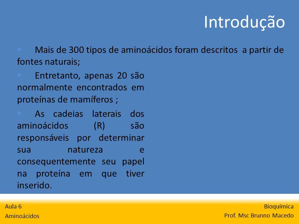 Introdução Bioquímica Prof.