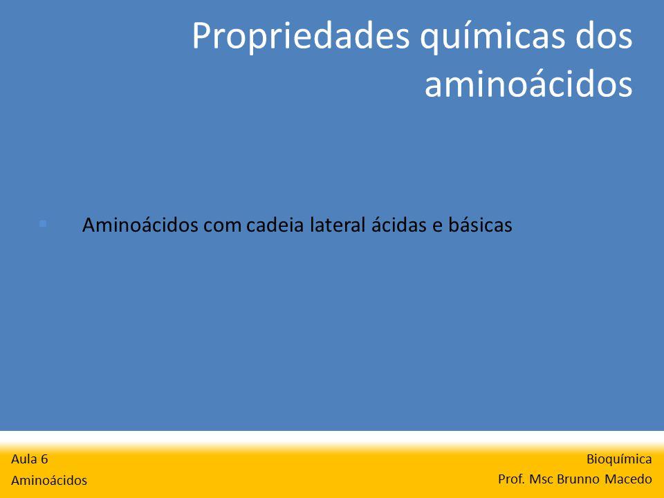 Metabolismo da hemoglobina Bioquímica Prof. Msc Brunno Macedo Aula 6 Aminoácidos
