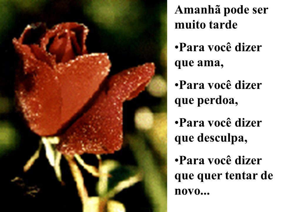 Amanhã pode ser muito tarde Para você dizer que ama, Para você dizer que perdoa, Para você dizer que desculpa, Para você dizer que quer tentar de novo...
