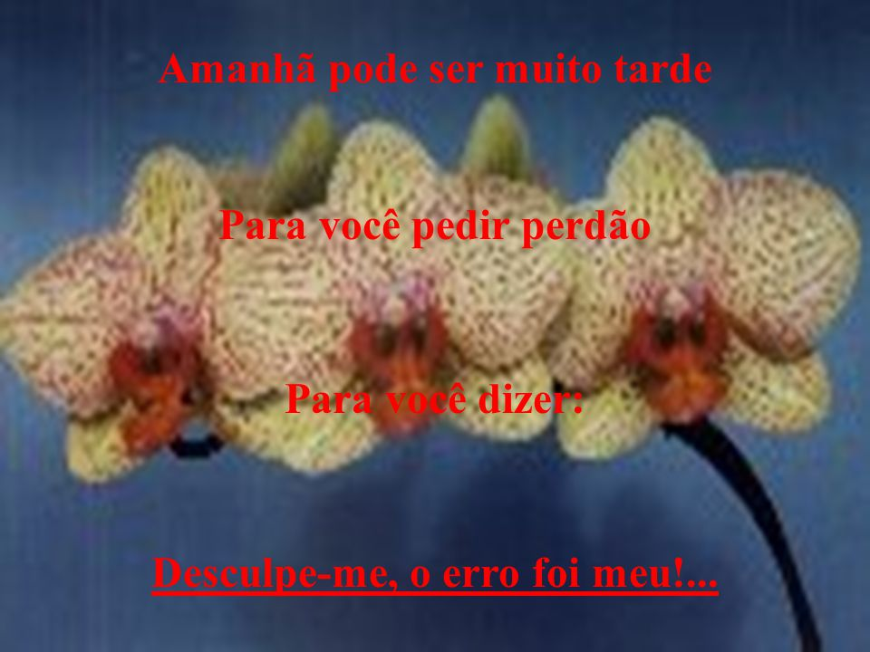 SEJA FELIZ HOJE !!!!!! Elisemara Mazini Camargo