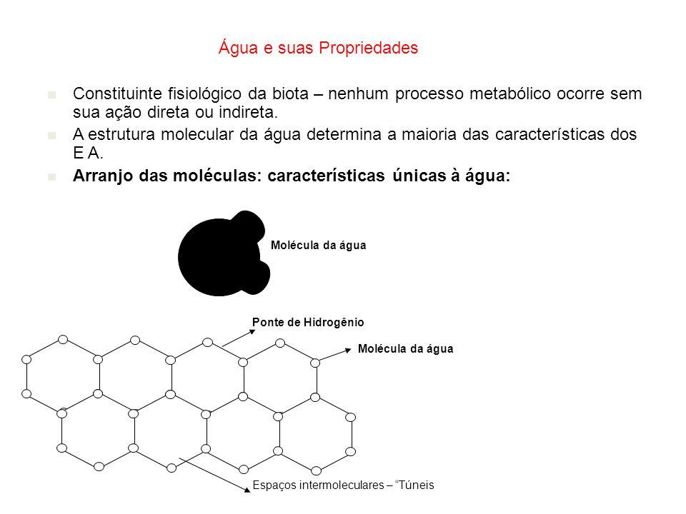 Água e suas Propriedades Constituinte fisiológico da biota – nenhum processo metabólico ocorre sem sua ação direta ou indireta. A estrutura molecular