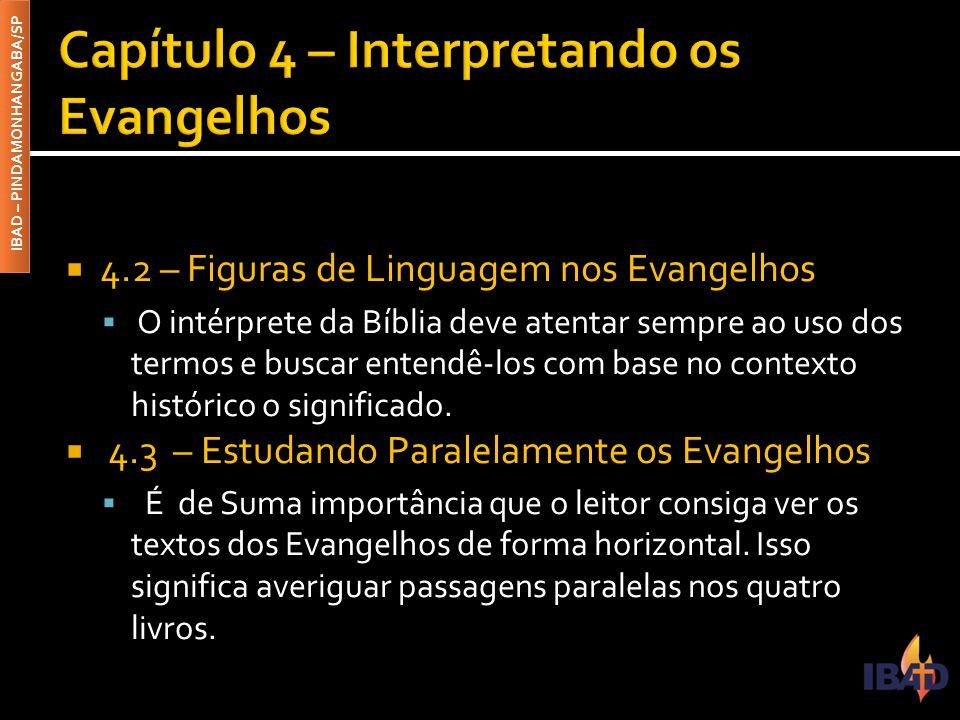 IBAD – PINDAMONHANGABA/SP  4.2 – Figuras de Linguagem nos Evangelhos  O intérprete da Bíblia deve atentar sempre ao uso dos termos e buscar entendê-