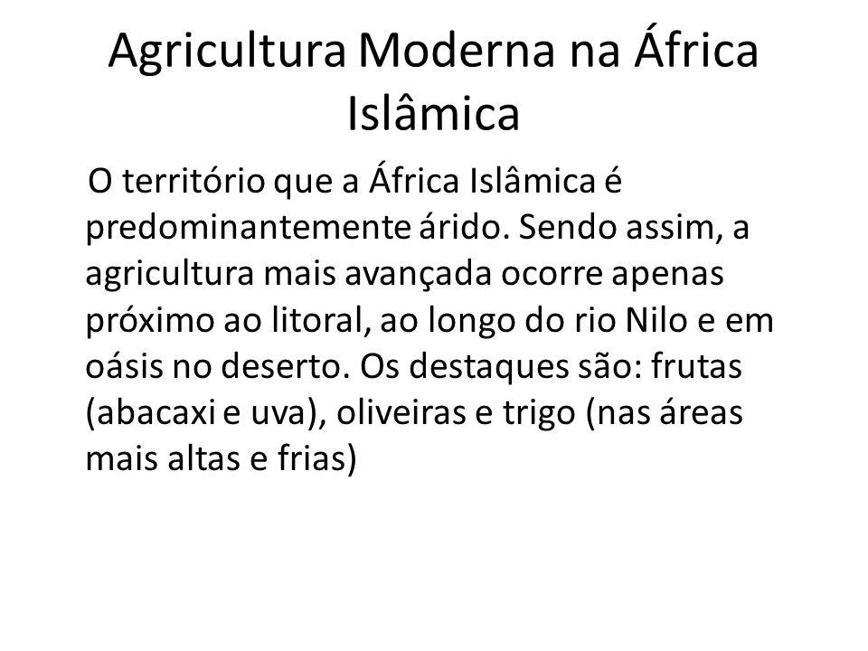 Agricultura Moderna na África Islâmica O território que a África Islâmica é predominantemente árido.