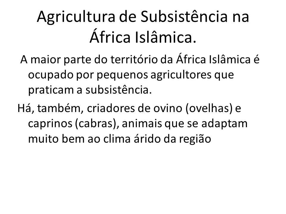 Agricultura de Subsistência na África Islâmica.