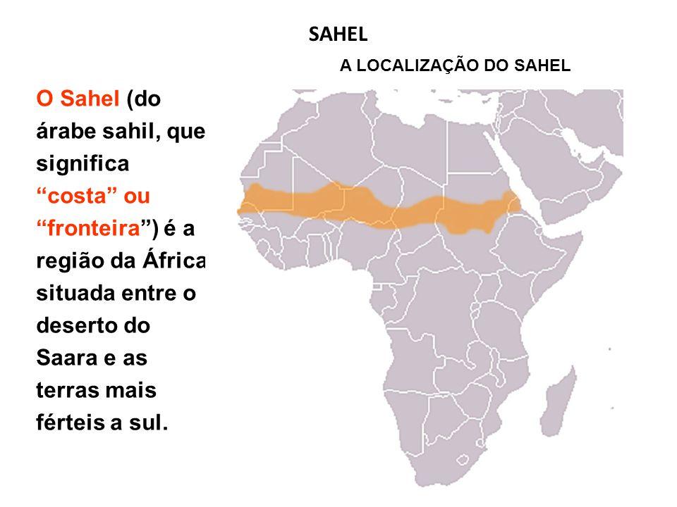 O Sahel (do árabe sahil, que significa costa ou fronteira ) é a região da África situada entre o deserto do Saara e as terras mais férteis a sul.