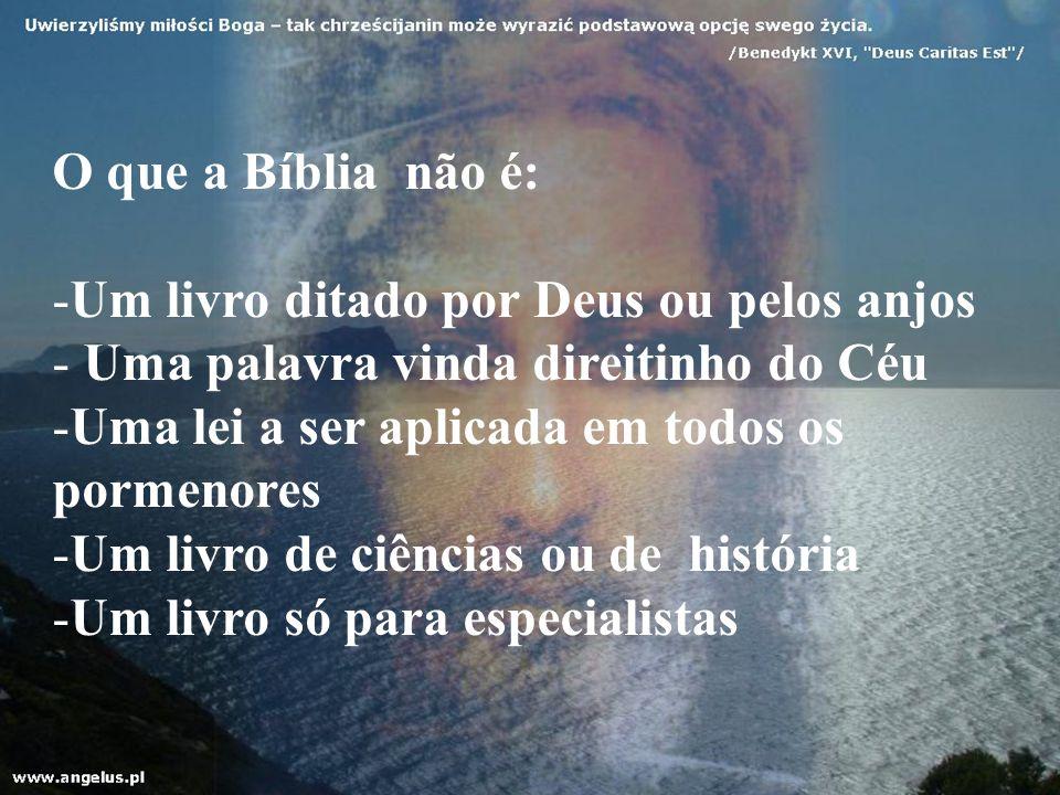 O que a Bíblia não é: -Um livro ditado por Deus ou pelos anjos - Uma palavra vinda direitinho do Céu -Uma lei a ser aplicada em todos os pormenores -U