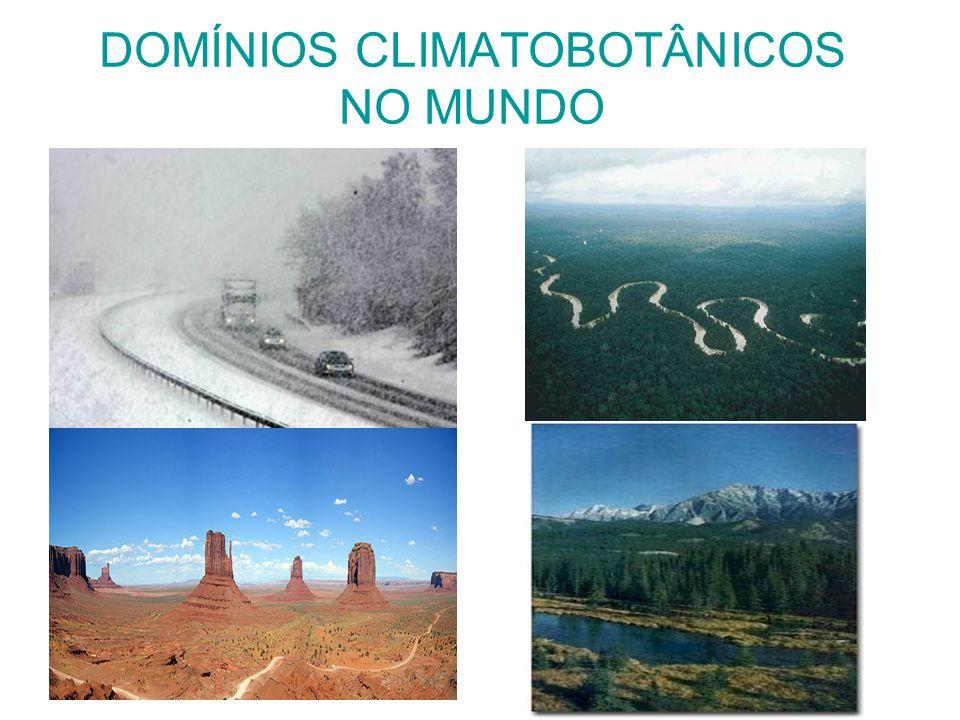 DOMÍNIOS CLIMATOBOTÂNICOS NO MUNDO