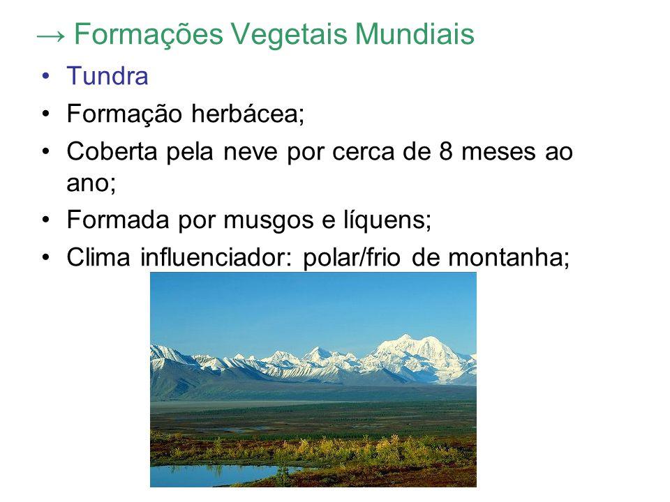 → Formações Vegetais Mundiais Tundra Formação herbácea; Coberta pela neve por cerca de 8 meses ao ano; Formada por musgos e líquens; Clima influenciador: polar/frio de montanha;