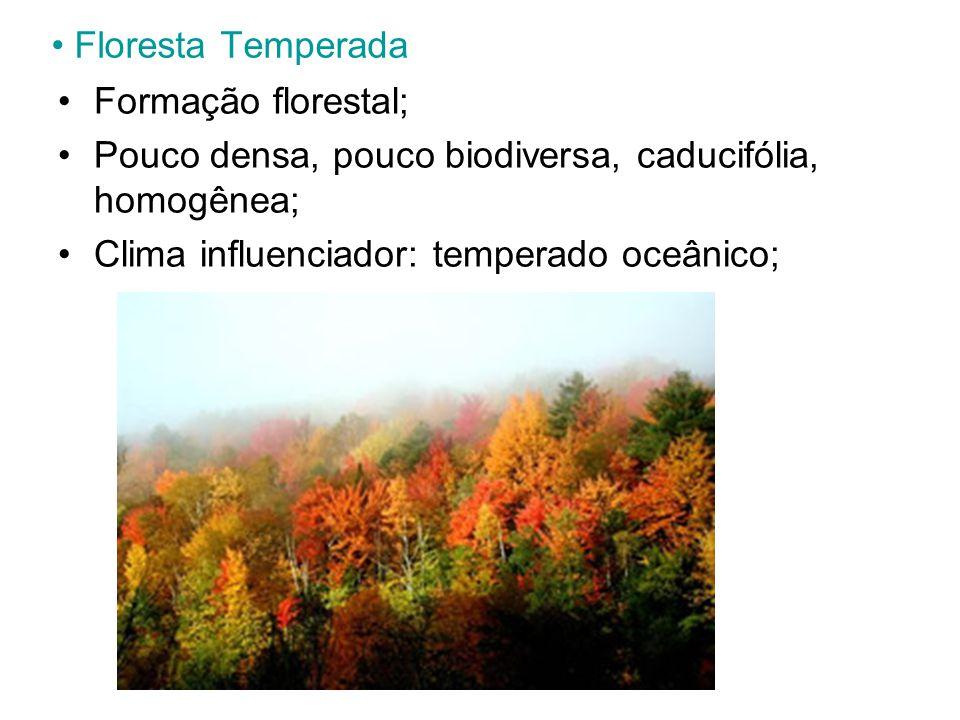 Floresta Temperada Formação florestal; Pouco densa, pouco biodiversa, caducifólia, homogênea; Clima influenciador: temperado oceânico;