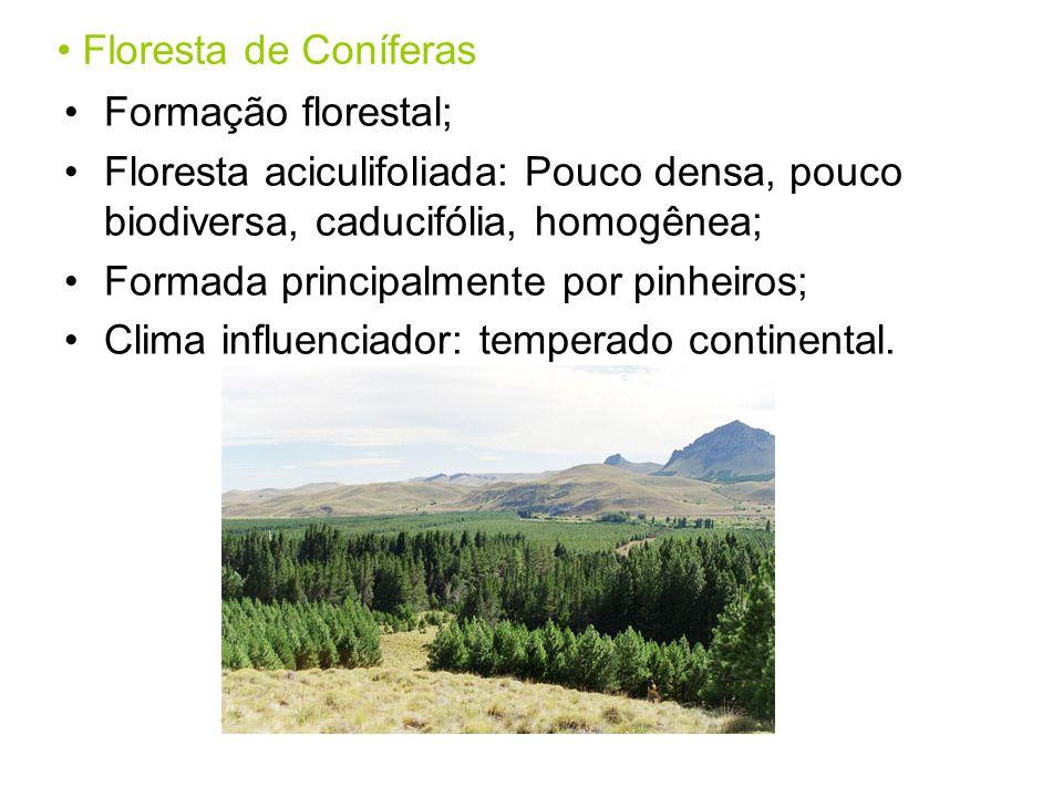 Floresta de Coníferas Formação florestal; Floresta aciculifoliada: Pouco densa, pouco biodiversa, caducifólia, homogênea; Formada principalmente por pinheiros; Clima influenciador: temperado continental.