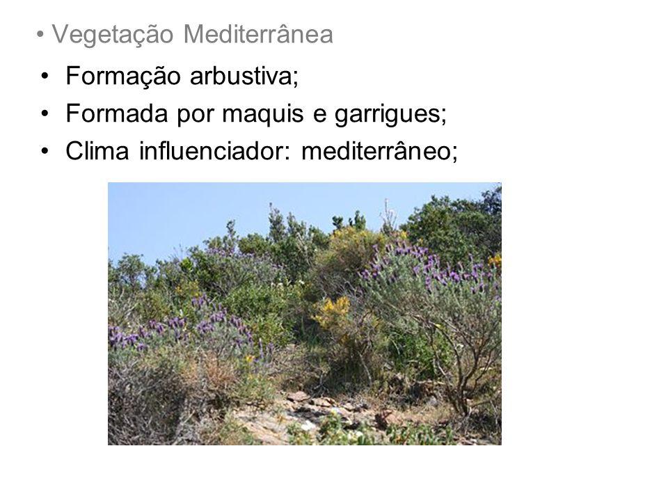 Vegetação Mediterrânea Formação arbustiva; Formada por maquis e garrigues; Clima influenciador: mediterrâneo;