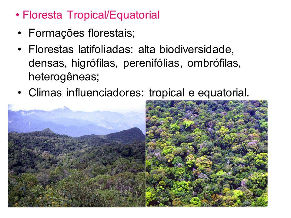 Floresta Tropical/Equatorial Formações florestais; Florestas latifoliadas: alta biodiversidade, densas, higrófilas, perenifólias, ombrófilas, heterogêneas; Climas influenciadores: tropical e equatorial.