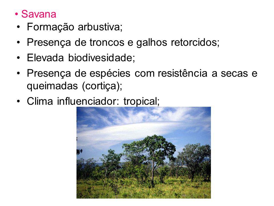Savana Formação arbustiva; Presença de troncos e galhos retorcidos; Elevada biodivesidade; Presença de espécies com resistência a secas e queimadas (cortiça); Clima influenciador: tropical;