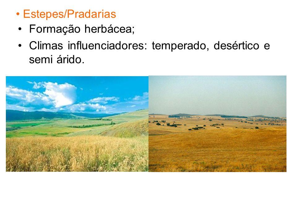 Estepes/Pradarias Formação herbácea; Climas influenciadores: temperado, desértico e semi árido.