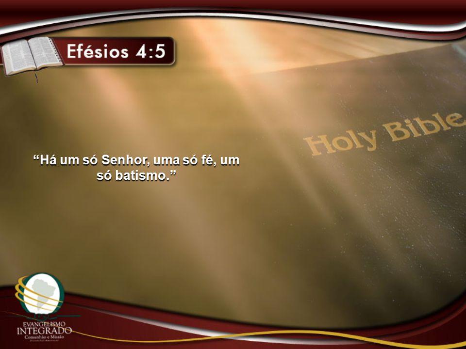 """""""Há um só Senhor, uma só fé, um só batismo."""""""