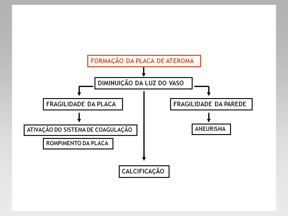 FORMAÇÃO DA PLACA DE ATEROMA DIMINUIÇÃO DA LUZ DO VASO FRAGILIDADE DA PLACAFRAGILIDADE DA PAREDE ATIVAÇÃO DO SISTEMA DE COAGULAÇÃO ROMPIMENTO DA PLACA