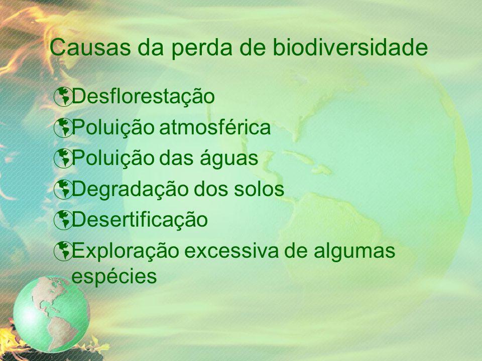 Causas da perda de biodiversidade  Desflorestação  Poluição atmosférica  Poluição das águas  Degradação dos solos  Desertificação  Exploração excessiva de algumas espécies
