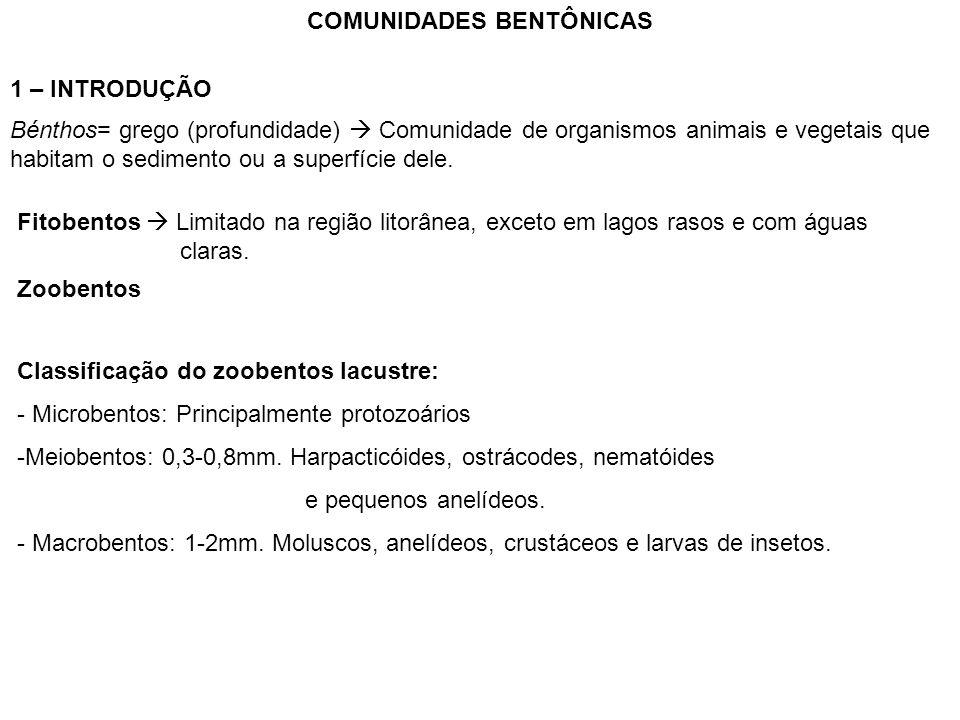 COMUNIDADES BENTÔNICAS 1 – INTRODUÇÃO Bénthos= grego (profundidade)  Comunidade de organismos animais e vegetais que habitam o sedimento ou a superfí