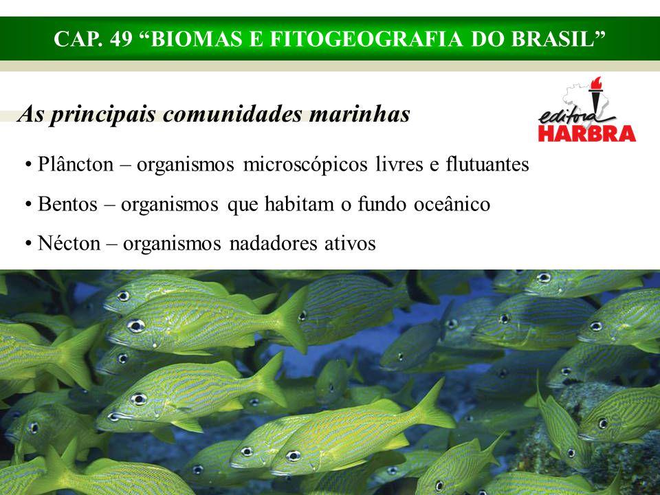 """CAP. 49 """"BIOMAS E FITOGEOGRAFIA DO BRASIL"""" As principais comunidades marinhas Plâncton – organismos microscópicos livres e flutuantes Bentos – organis"""