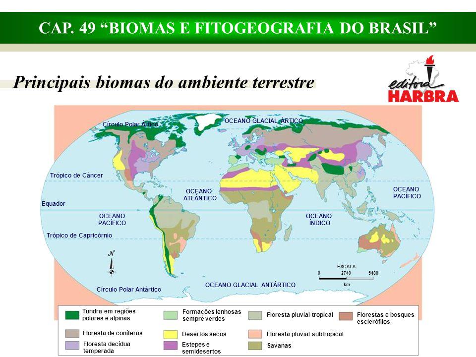 """CAP. 49 """"BIOMAS E FITOGEOGRAFIA DO BRASIL"""" Principais biomas do ambiente terrestre OCEANO GLACIAL ANTÁRTICO OCEANO GLACIAL ÁRTICO OCEANO ATLÂNTICO OCE"""