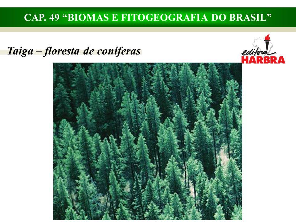 """CAP. 49 """"BIOMAS E FITOGEOGRAFIA DO BRASIL"""" Taiga – floresta de coníferas"""