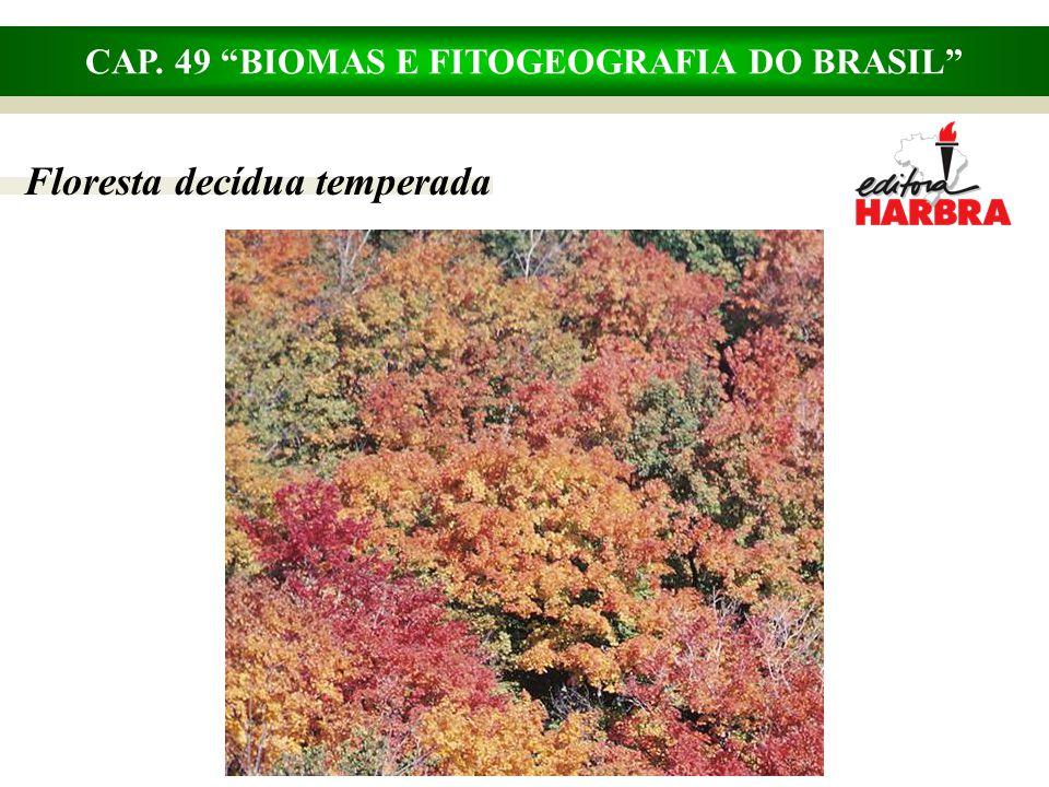 CAP. 49 BIOMAS E FITOGEOGRAFIA DO BRASIL Desertos