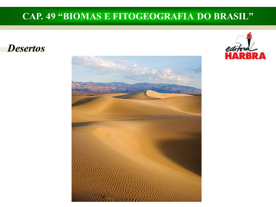 CAP. 49 BIOMAS E FITOGEOGRAFIA DO BRASIL Desertos