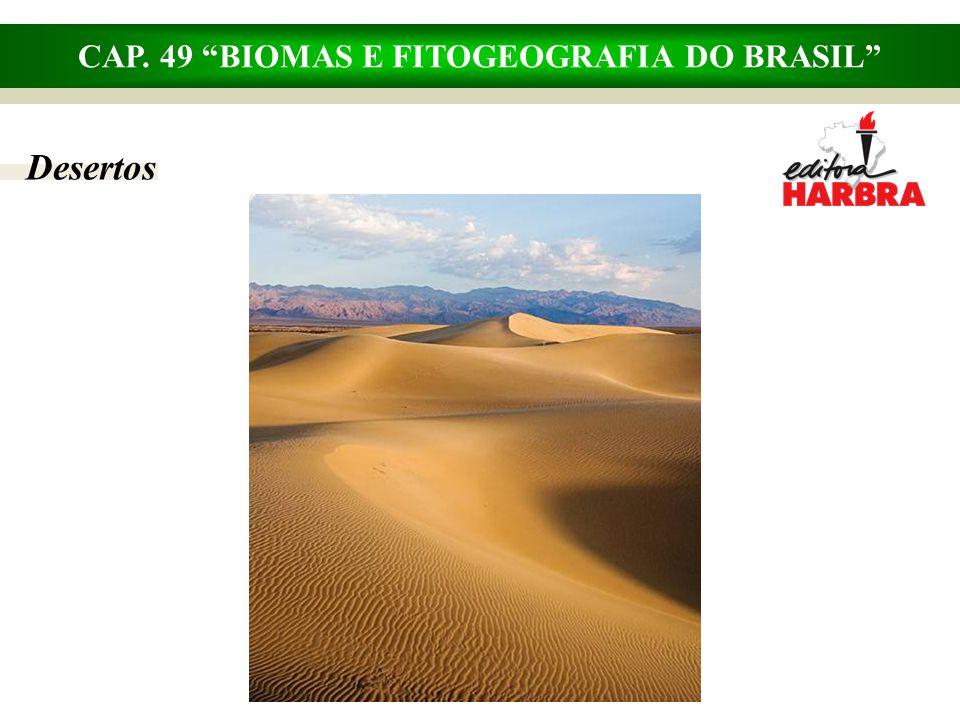 CAP. 49 BIOMAS E FITOGEOGRAFIA DO BRASIL Floresta pluvial tropical