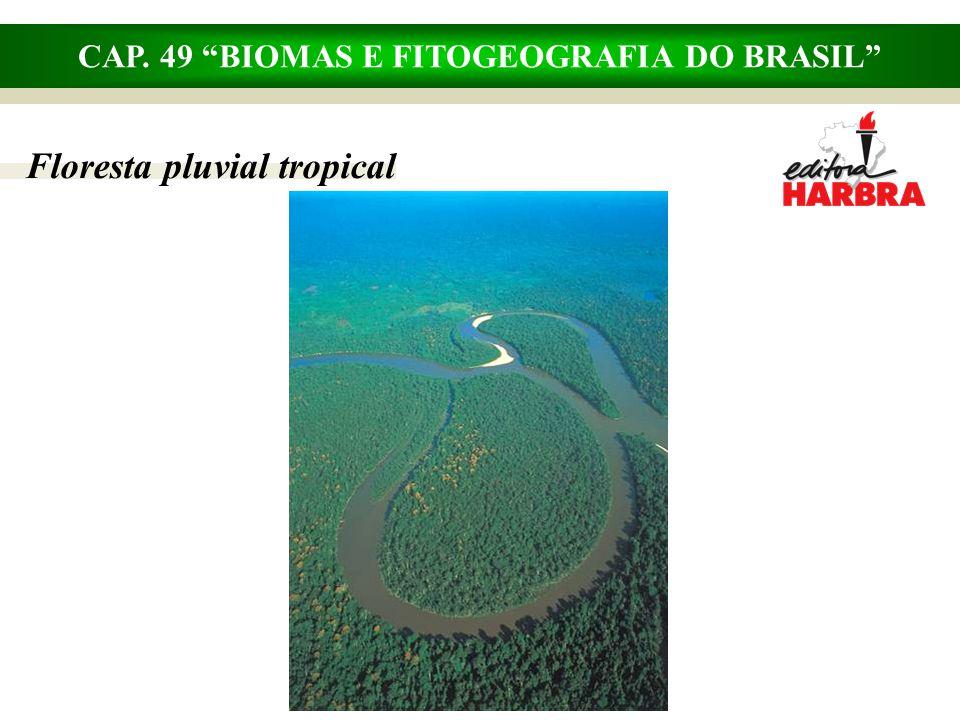 CAP. 49 BIOMAS E FITOGEOGRAFIA DO BRASIL Savanas, campos, estepes